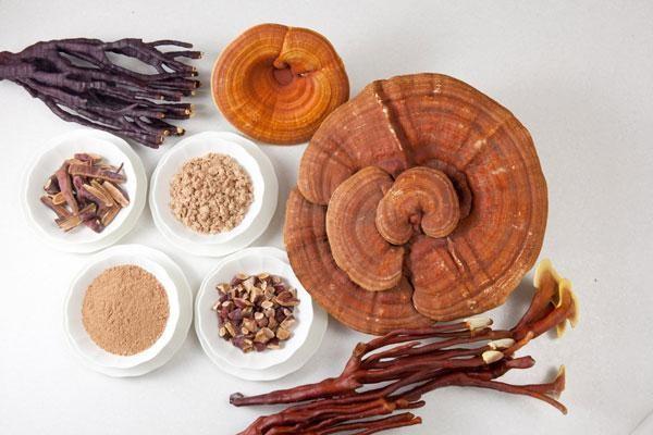 Đun nước, pha trà và ngâm rượu là 3 cách sử dụng nấm linh chi phổ biến
