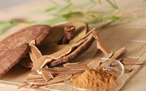 Nấm linh chi với nhiều hoạt chất quý, điều trị nhiều loại bệnh khác nhau