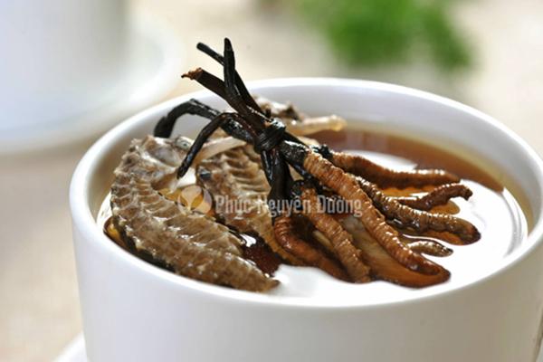 Đông trùng hạ thảo hãm nước uống trà