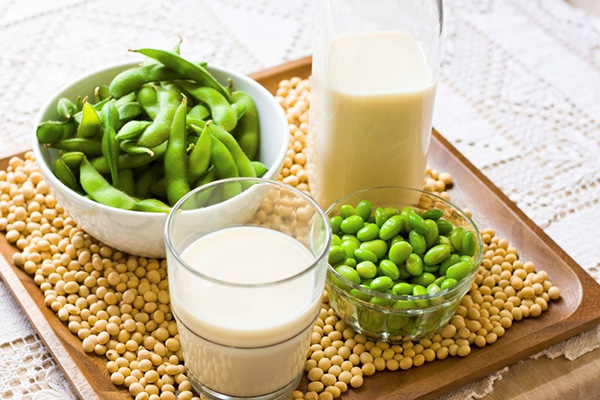 Uống mầm đậu nành có tác dụng gì